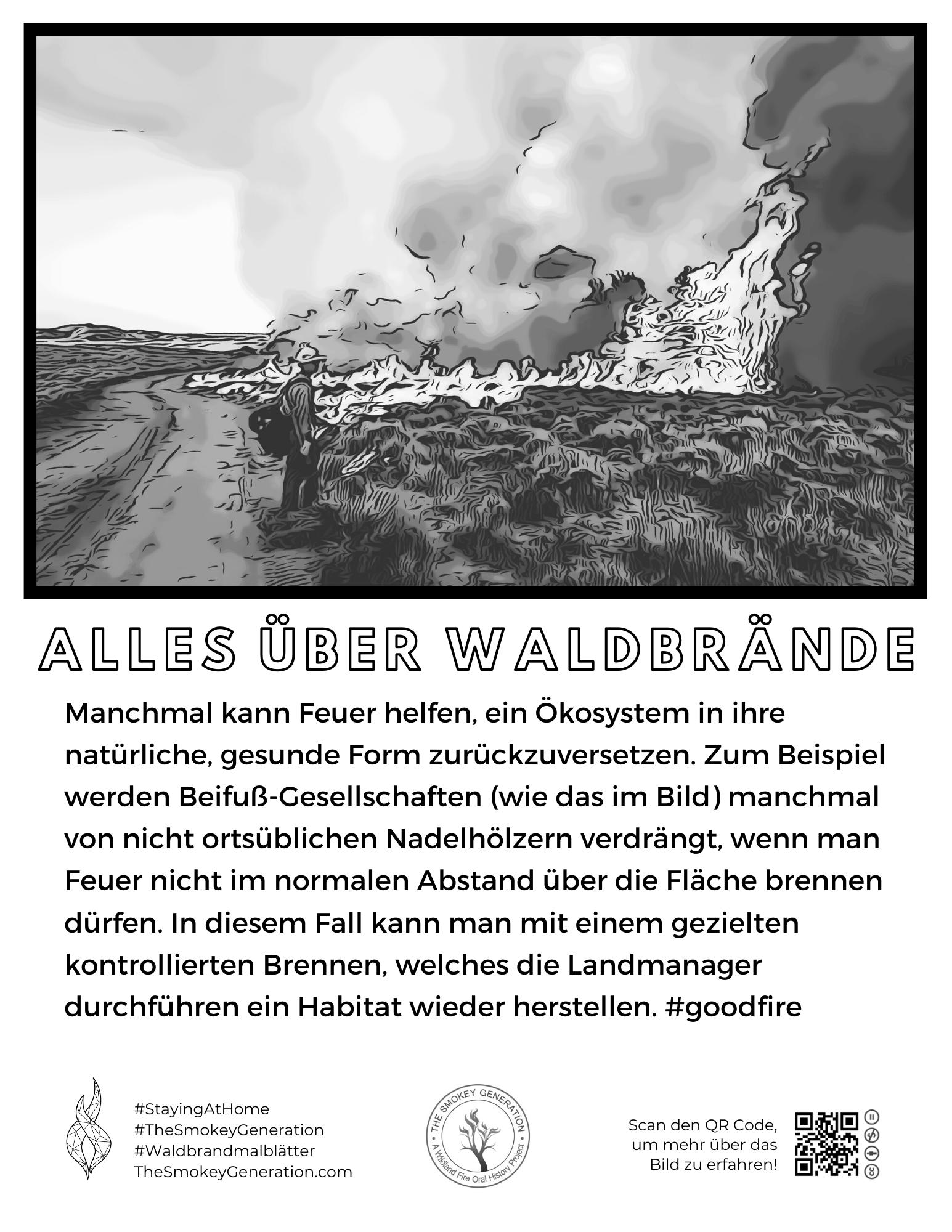 malvorlage beifuß und feuer deutsch  the smokey generation